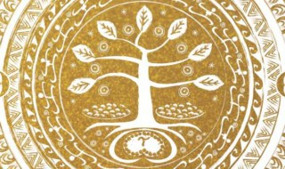 natural-hygiene-tree