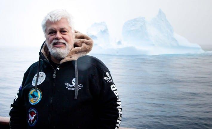 Paul Watson Whale Wars