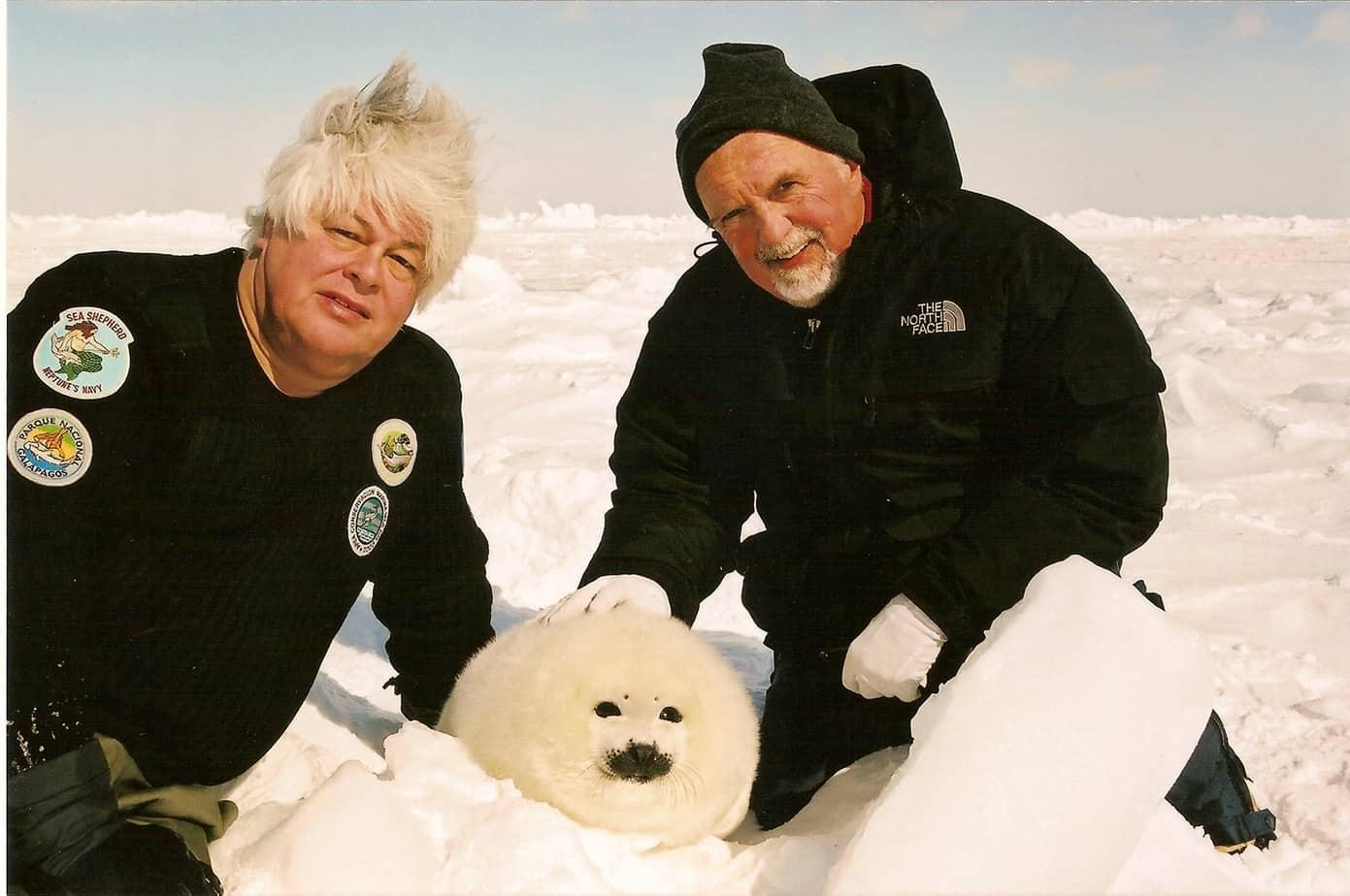 пол уотсън тюлен