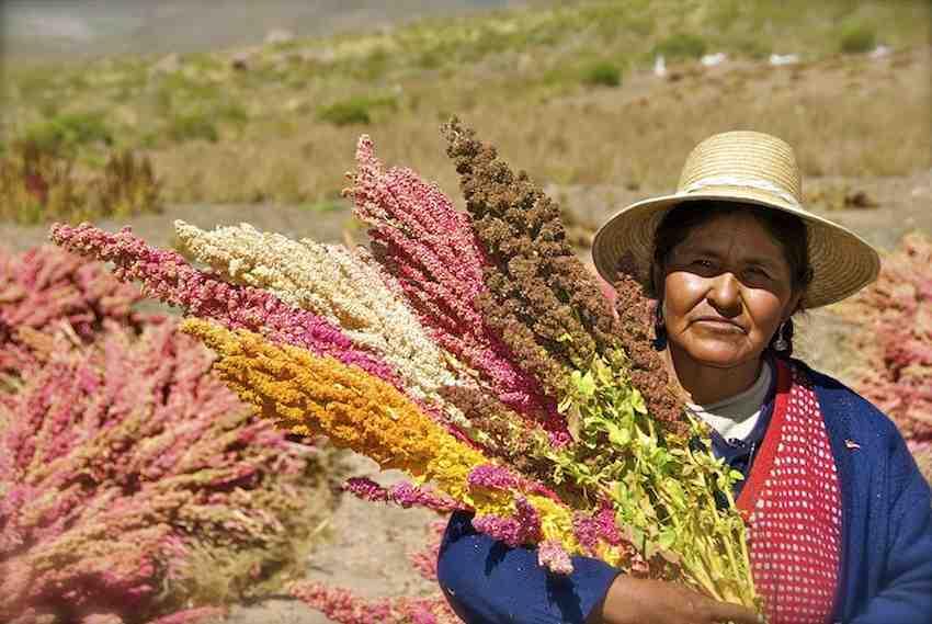 quinoa-farmers-bolivia