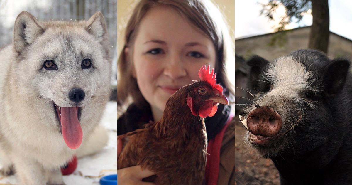 Ако те са само животни, какво е да бъдеш човек?