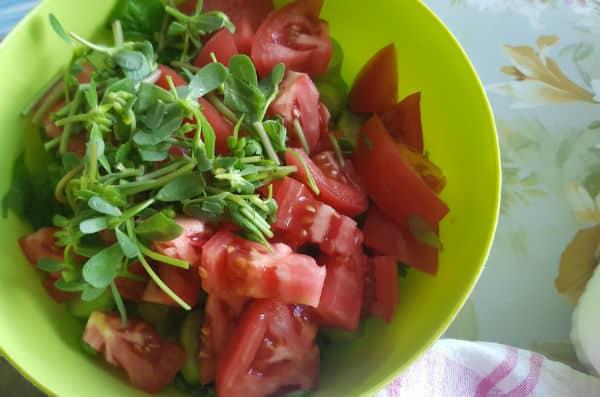 domashna-salata
