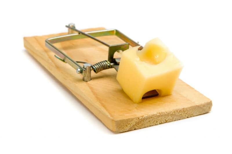 Защо е толкова трудно да откажеш сиренето?