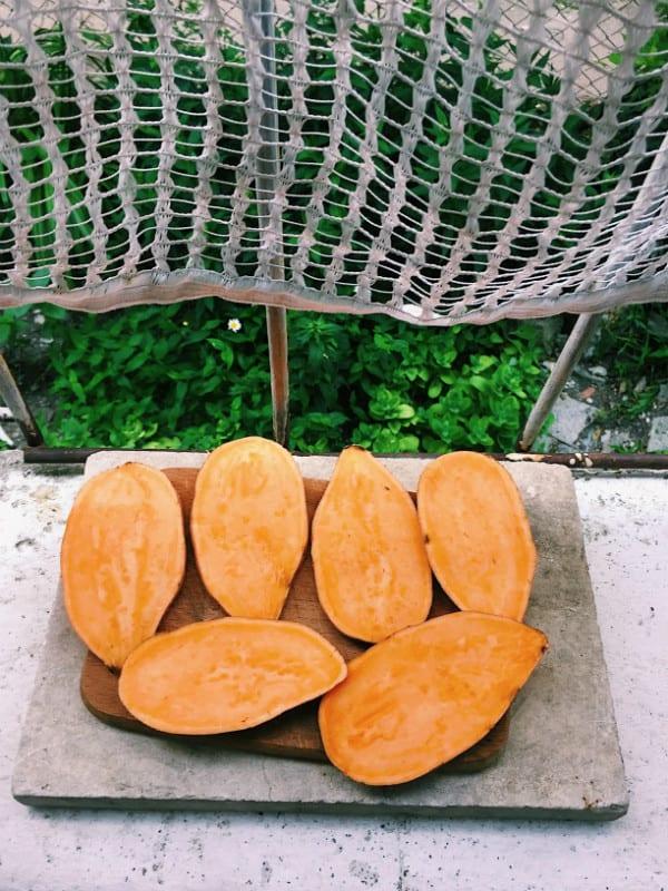 sweet-potato-marie-andreeva